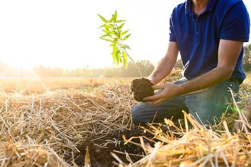 Ferme des Clos Agriculteurs d'Avenir